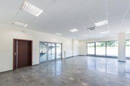 hol wejściowy 1 - hala magazynowa z budynkiem biurowym, dla Tech-Met, Kolonia Sokolniki