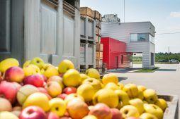 widok ogólny 2 - sortownia i przechowalnia owoców z częścią biurową, dla Gaik, Witalówka