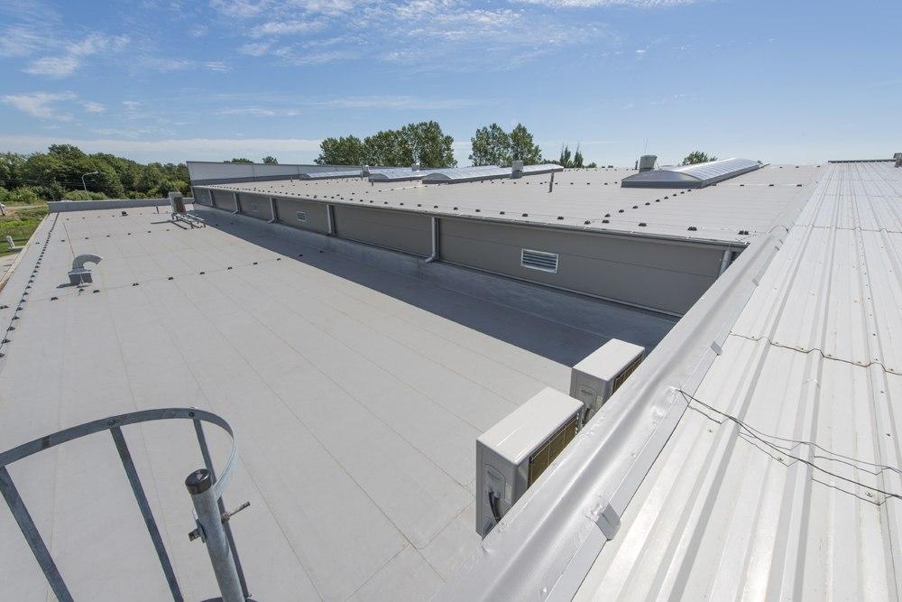 dach hali - hala produkcyjna z częścią biurową, dla Leann Stańczyk, Słupsk, woj. pomorskie