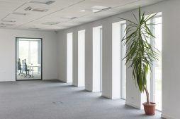 korytarz w części biurowej - hala produkcyjna z budynkiem biurowym, dla Adams, Mrągowo, woj. warmińsko-mazurskie