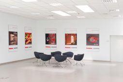 wnętrze budynku biurowego - hala produkcyjna z budynkiem biurowym, dla Uniservice, Skarbimierz