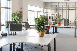pomieszczenie biurowe 2 - hala handlowa, dla Koopman International, Komorniki, woj. wielkopolskie