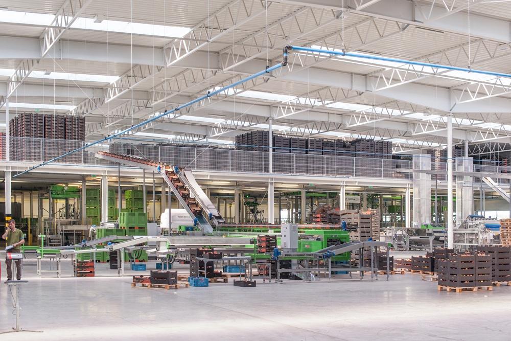 wnętrze hali 2 - sortownia owoców z częścią biurową, dla Europejskie Centrum Owocowe, Rębowola