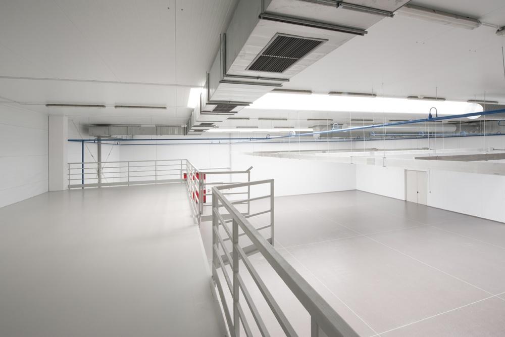 wnętrze 1 - hala produkcyjna z budynkiem biurowym, dla NWM, Gubin, woj. lubuskie