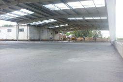 konstrukcja stalowa widziana od wewnątrz 5 - hala produkcyjno-magazynowa, dla Drewco, Chojna