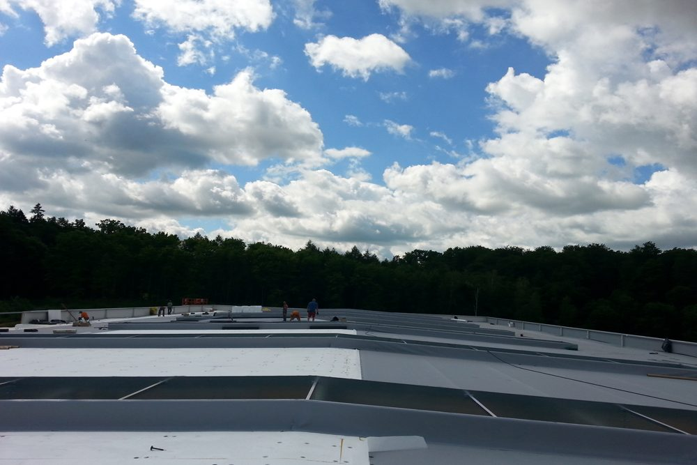 otwory okienne w dachu 1 - hala produkcyjno-magazynowa z budynkiem biurowym, dla Jota Group, Ostróda