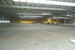 wnętrze hali w trakcie budowy - hala produkcyjna, dla Wiefferink, Wykroty, woj. dolnośląskie