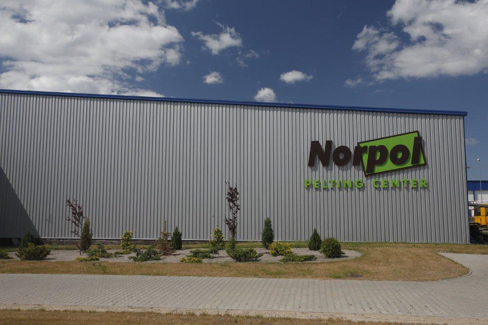 zbliżenie na logo inwestora - hala produkcyjno-magazynowa z budynkiem biurowym, dla Norpol, Łozienica