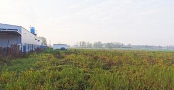 działka budowlana pod inwestycję - hala o powierzchni 6.000 m2, budowa dla inwestora zagranicznego, generalne wykonawstwo CoBouw Polska