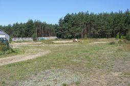otoczenie - hala produkcyjna, dla Janssen, Konin, wielkopolskie